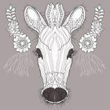 Sketch, doodle, hand drawn illustration of zebra. Stock Image