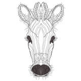 Sketch, doodle, hand drawn illustration of zebra. Stock Photos