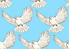 Sketch dove of peace in vintage style Royalty Free Stock Photography