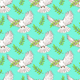 Sketch dove of peace Royalty Free Stock Photos