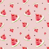 Watercolor seamless pattern from red juicy watermelon slicies. royalty free illustration
