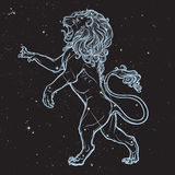 Sketch drawing of rearing lion isolated on nightsky background. Stock Photo
