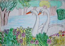 Sketch drawing of swan lake Stock Image