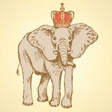 Sketch elephant in crown, vector background Royalty Free Stock Images