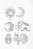 Sketch of elephant sun flower moon white background. Royalty Free Stock Image