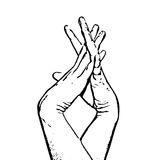 Sketch of entangled female hands, black and white vector graphic Royalty Free Stock Photography