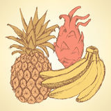 Sketch exotic fruits in vintage style Stock Photo