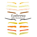 Sketch eyebrows Royalty Free Stock Images