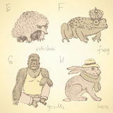 Sketch fancy animals alphabet in vintage style Royalty Free Stock Photos