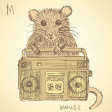 Sketch fancy mouse in vintage style Royalty Free Stock Photo