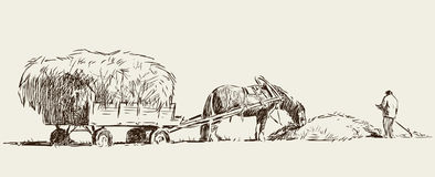 Sketch of a farmer harvests the hay Stock Images
