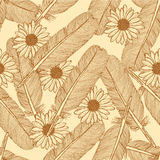Sketch feather and daisy, vector  seamless pattern Royalty Free Stock Photography