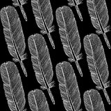 Sketch feather,  vintage seamless pattern Stock Image