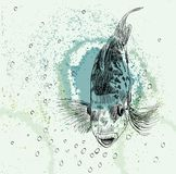 Sketch of a fish Royalty Free Stock Photography