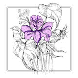 Sketch flower bouquet in frame. Partialy colored sketch flower bouquet in frame Stock Photos