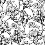 Sketch flower seamless Stock Images