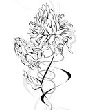 Sketch with flowers Royalty Free Stock Image