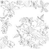Sketch with flowers (black and white) Royalty Free Stock Photo