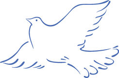 Sketch of a flying dove Stock Image