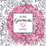 Sketch frame with guarana. Beautiful sketch frame with guarana on a pink watercolor background. hand-drawn illustration stock illustration