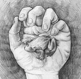 Sketch of a frog in hand. Hand drawn pencil sketch of a hand gently holding little frog on it's palm royalty free illustration