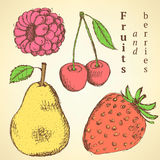 Sketch fruits and berries in vintage style Stock Photography