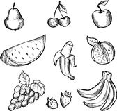 Sketch of fruits icon set Stock Photography