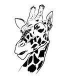 Sketch of a giraffe. Royalty Free Stock Image