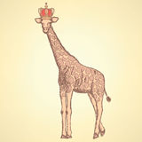 Sketch giraffe in crown,  background Royalty Free Stock Photos