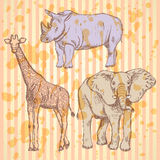 Sketch giraffe, elephant, rhino,  background Stock Photo