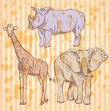 Sketch giraffe, elephant, rhino,  background Stock Photo