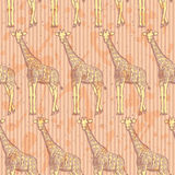 Sketch giraffe, vector vintage seamless pattern Stock Image