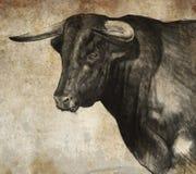 Sketch gjorde med den digitala tableten av den spanska tjuren Royaltyfri Foto
