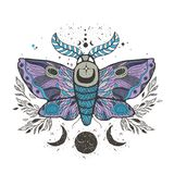 Sketch graphic illustration Beautiful Moth with mystic and occult hand drawn symbols. Vector illustration. Halloween and esoteric vector illustration
