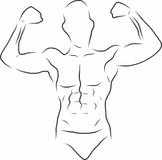 Sketch Handsome gym. Royalty Free Stock Image