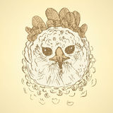 Sketch harpia bird head in vintage style Royalty Free Stock Photography