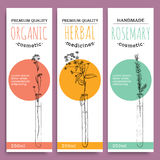 Sketch herbal vertical banners with organic herbs rosemary valuable for human health vector illustration. Sketch herbal vertical banners with organic herbs royalty free illustration