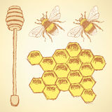 Sketch honey cells, stick and bee in vintage style Royalty Free Stock Image