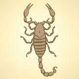 Sketch horrible scorpion in vintage style Stock Images