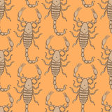 Sketch horrible scorpion in vintage style Royalty Free Stock Photo