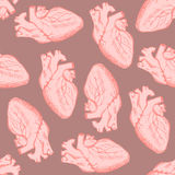 Sketch human heart in vintage style Royalty Free Stock Photography