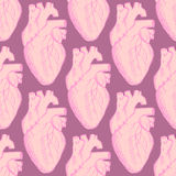 Sketch human heart in vintage style Royalty Free Stock Image