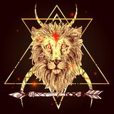 Sketch illustration lion Royalty Free Stock Photos