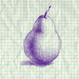 Sketch illustration of pear. Stock Photography