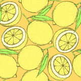 Sketch juicy lemon in vintage style Stock Photography