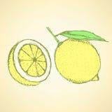 Sketch juicy lemon in vintage style Stock Image