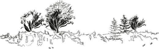 Sketch of landscape Stock Photo
