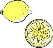 Sketch of lemon Royalty Free Stock Photos