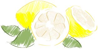 sketch of lemons Royalty Free Stock Photography