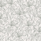 Sketch lilies Royalty Free Stock Images